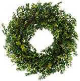 The Wreath Depot Arbor Artificial Boxwood Wreath, 22 Inch