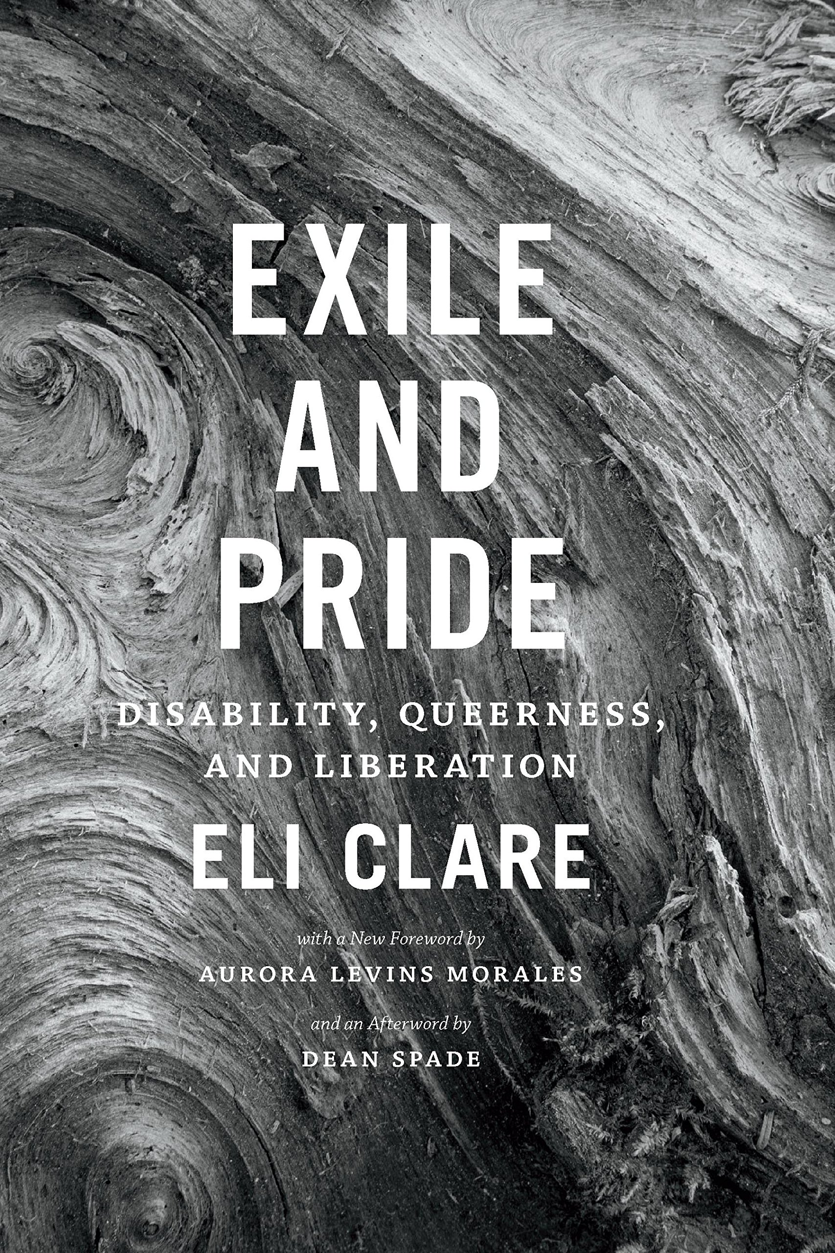 Exile And Pride  Disability Queerness And Liberation  English Edition