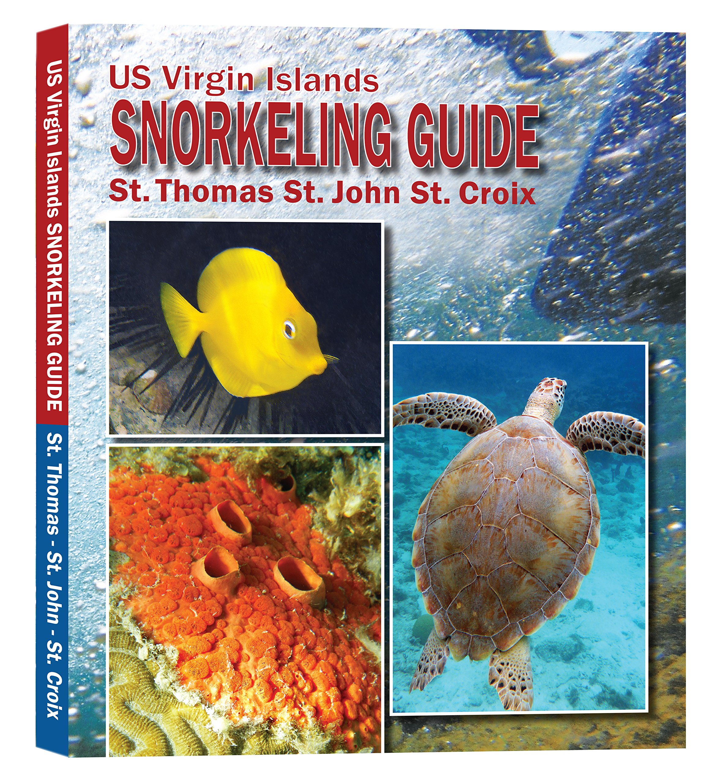 US Virgin Islands Snorkeling Guide product image