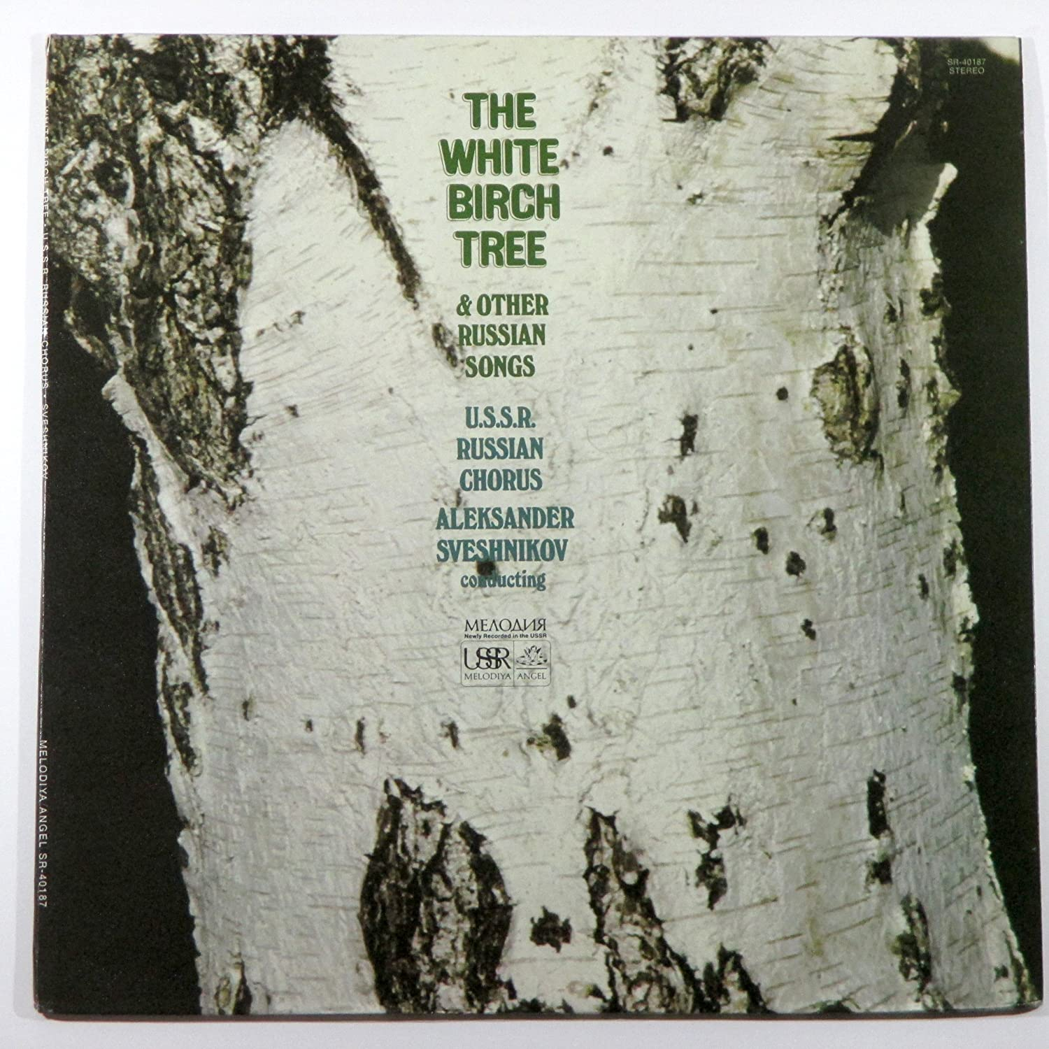 Shops Birch in the USSR 62