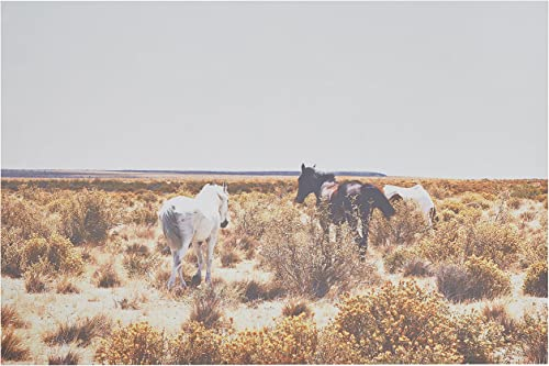 Amazon Brand Rivet Canvas Print Wall Art of Horses Grazing