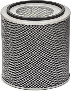 product image for Austin Air FR450B Healthmate Plus Standard Replacement Filter, White