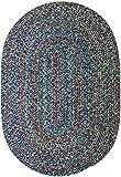 Sonya Indoor/Outdoor Oval Reversible Braided Rug, 4 by 6-Feet, Denim Multicolor