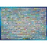 ポケットモンスターベストウイッシュ 1000ラージピース 全国図鑑全キャラパズル 1000-L05