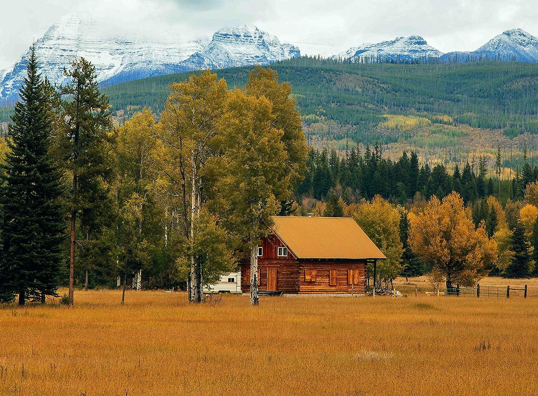 【オープニング大セール】 大人用ジグソーパズル田舎バーンフォレストMountain Landscape Landscape 500-pieces B0777S4FDM B0777S4FDM, オフィス主任:e64e6349 --- a0267596.xsph.ru