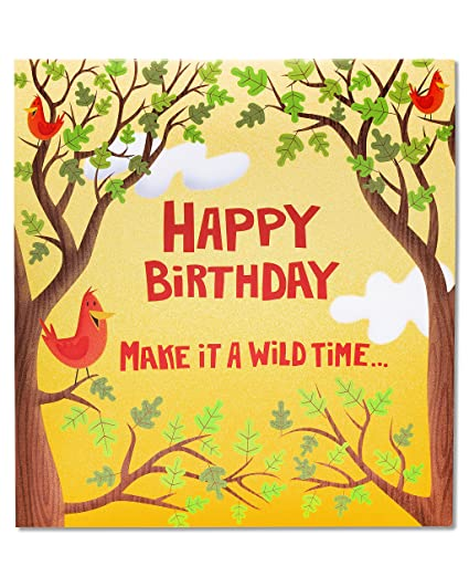 Amazon American Greetings Wild Time Birthday Card With Music