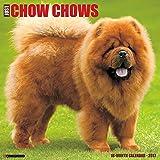 Just Chow Chows 2017 Wall Calendar (Dog Breed Calendars)