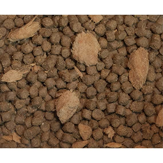 Amazon.com: wysong Nurture con Quail Canina/Feline Formula ...
