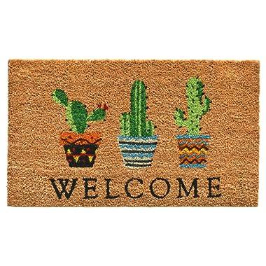 Calloway Mills 104051729 Cactus Welcome Doormat, 17  x 29 , Multicolor