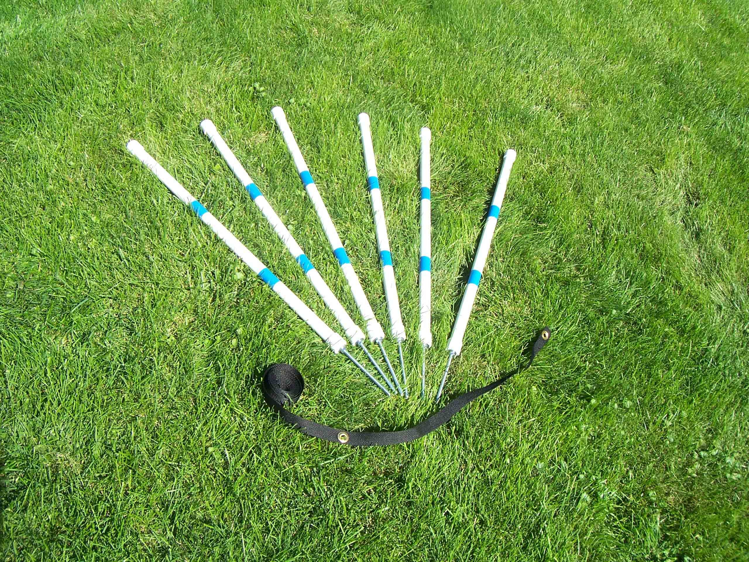 Agility Gear HD Stick-in-the-Ground Weave Poles (6 poles with Heavy Duty Spikes and Placer)