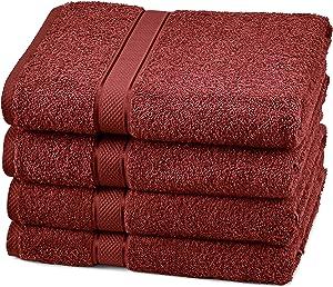 Pinzon 4 Piece Egyptian Cotton Bath Towels Set - Cranberry