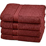 Pinzon 4 Piece Egyptian Cotton Bath Towels Set - Cranberry