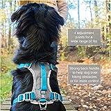 Kurgo Dog Harness for Large, Medium & Small Dogs