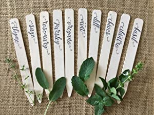 Plantid Assorted 10-Pack Kitchen Herbs! Farmhouse Decor Outdoor Indoor Herb Garden Stakes, Plant Labels, Plant Tags, Garden Markers, Garden Accessories, Garden Gifts, Holiday Stocking Stuffers