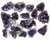1 Pound of Amethyst Clusters from Uruguay - Natural Mineral Quartz Crystal