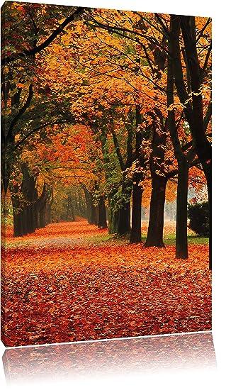 Baumallee im Herbst schwarz//weiß Leinwandbild Wanddeko Kunstdruck