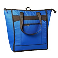 Rachael Ray ChillOut Thermal Tote
