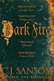 Dark Fire (The Shardlake Series Book 2) (English Edition)