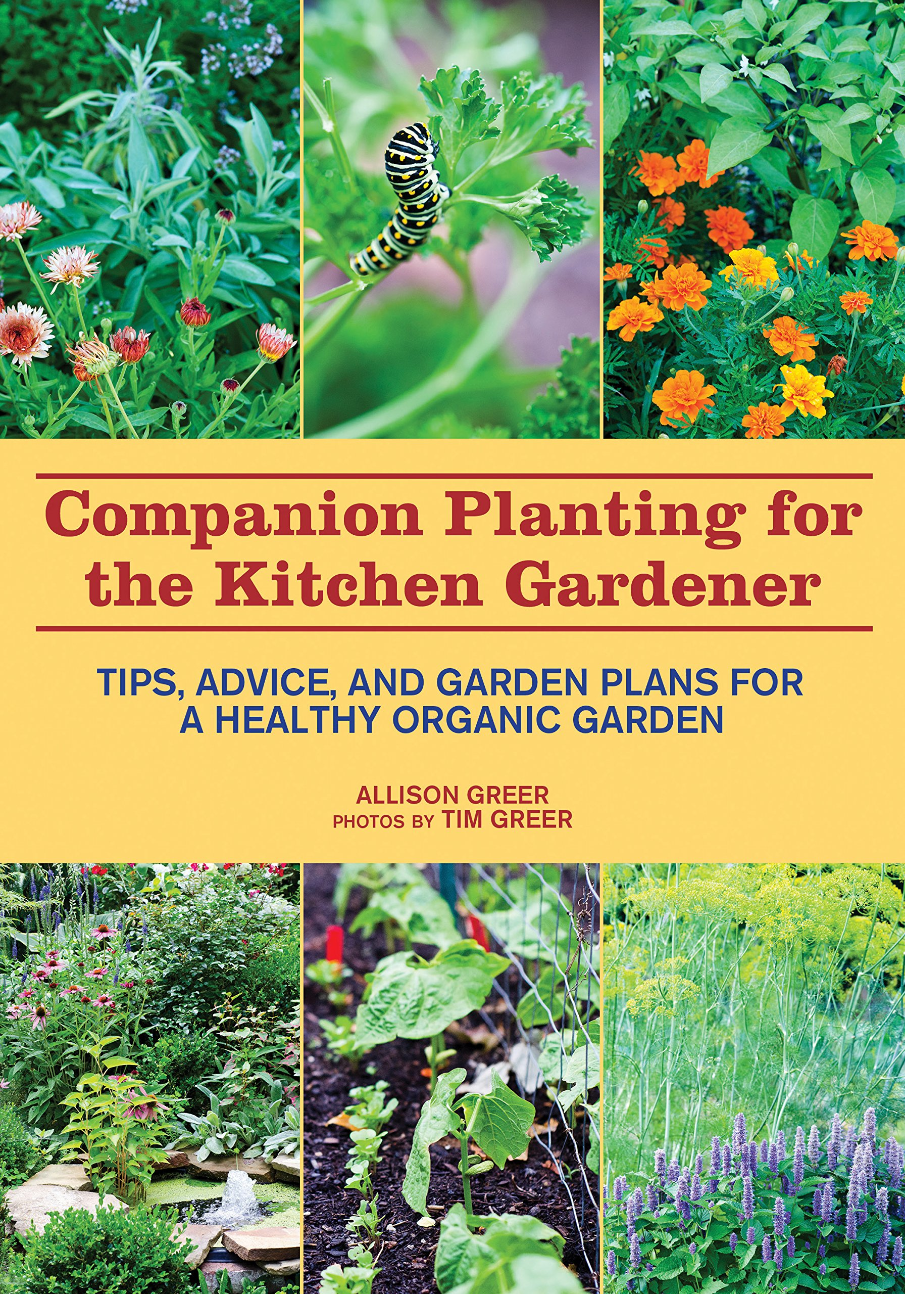 Kitchen Gardeners Companion Planting For The Kitchen Gardener Tips Advice And