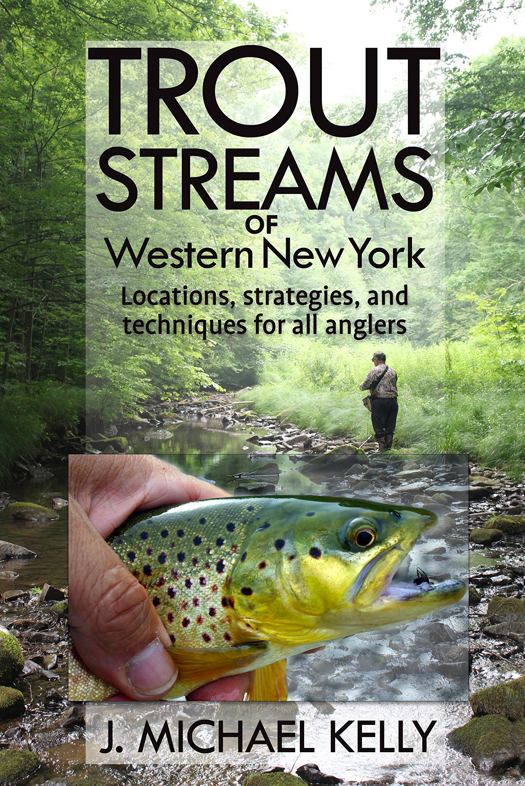 Trout Streams Of Western New York: Locations, Strategies and Techniques for All Anglers pdf epub