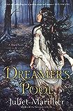 Dreamer's Pool: Blackthorn and Grim 1