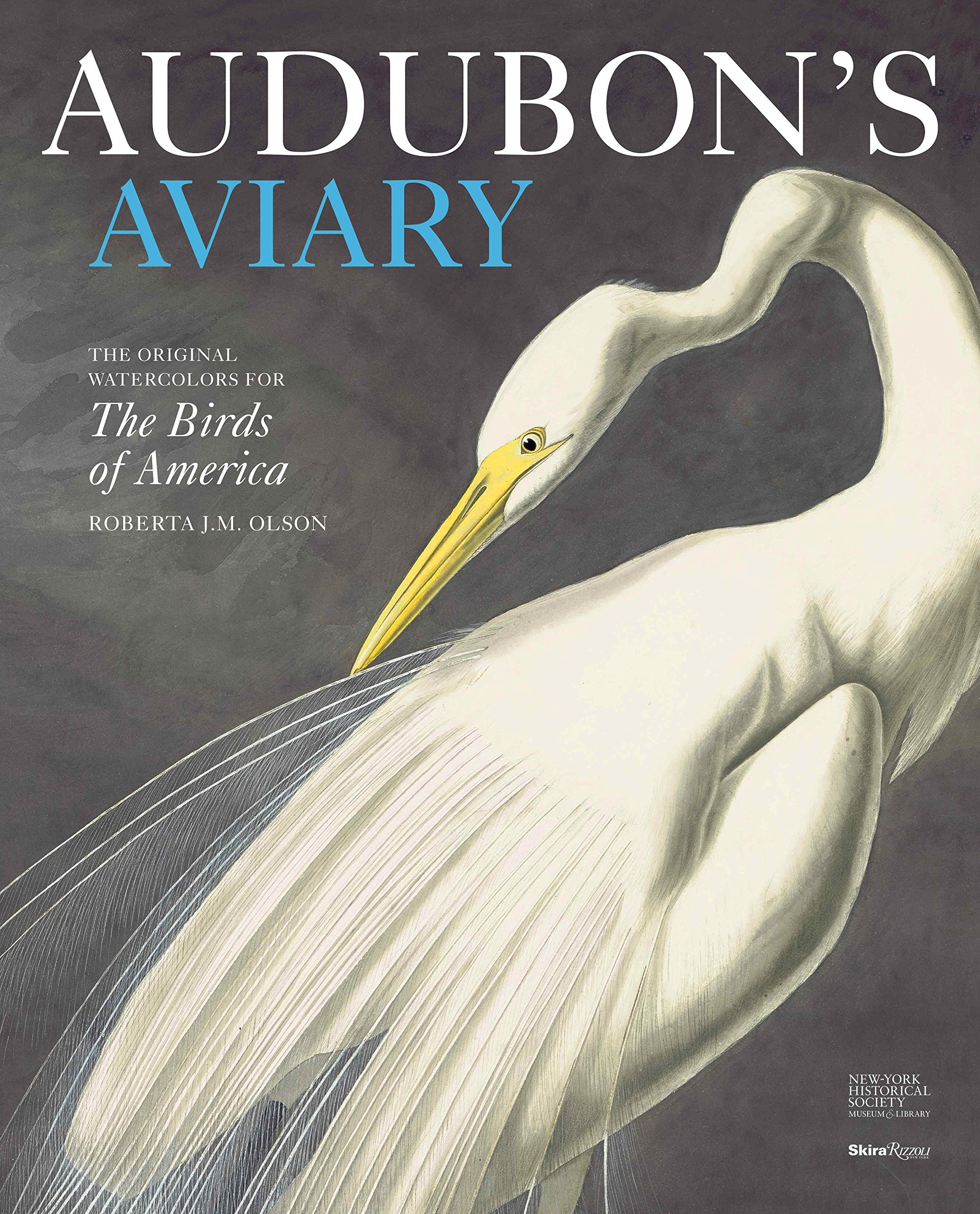 Download Audubon's Aviary: The Original Watercolors for The Birds of America PDF