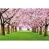 Papel pintado fotográfico que muestra un bosque con cerezos - imagen mural y papel pintado de la primavera de color rosa - decoración mural de arboles y bosque by GREAT ART (210 x 140 cm)