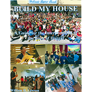 Build My House: A Guide for the Interpretation of the Book of Haggai