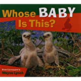 Whose Baby Is This? (Whose? Animal Series)