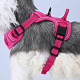 Adjustable Soft Padded No Pull Pet Dog Harness with Heavy Duty Handle for Dog Training Walking, S Pink