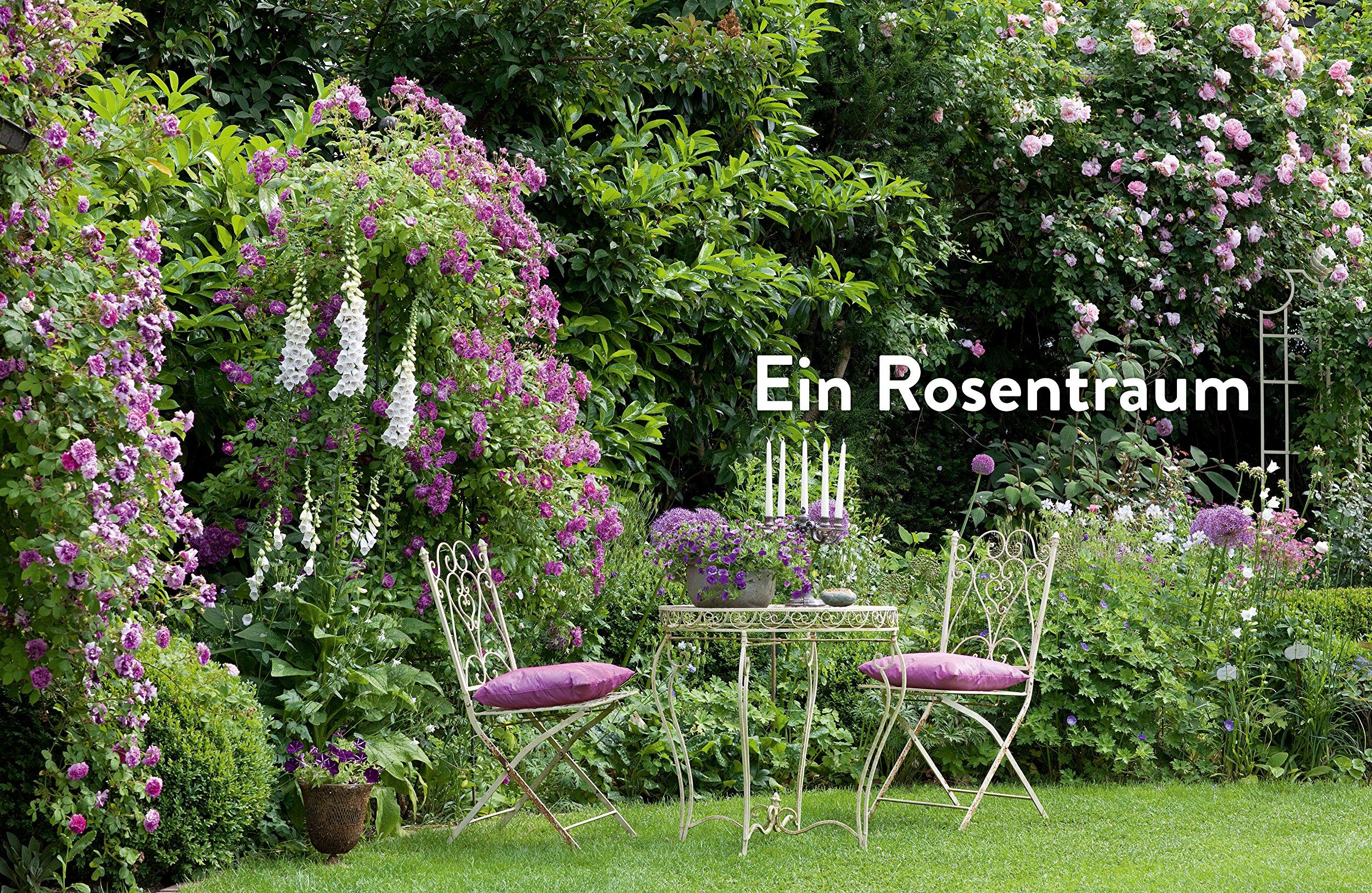 Verrückt nach Garten: Ideen und Erfahrungen kreativer Gärtner ...