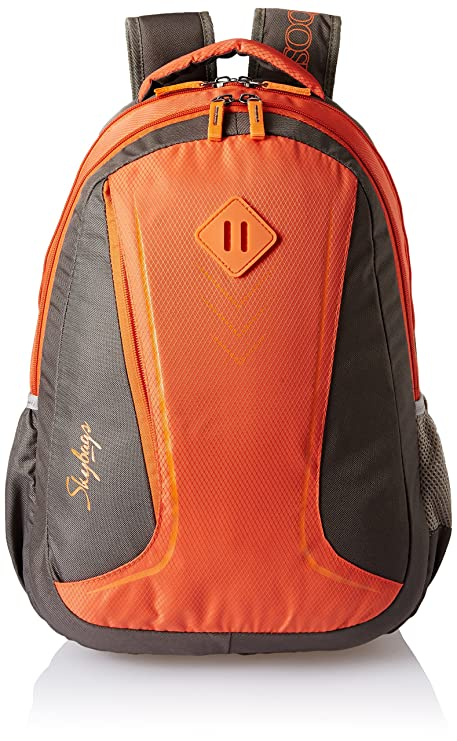 1afff48c13 Skybags 25 Ltrs Grey and Orange Casual Backpack (BPLEO5GOE)  Amazon ...