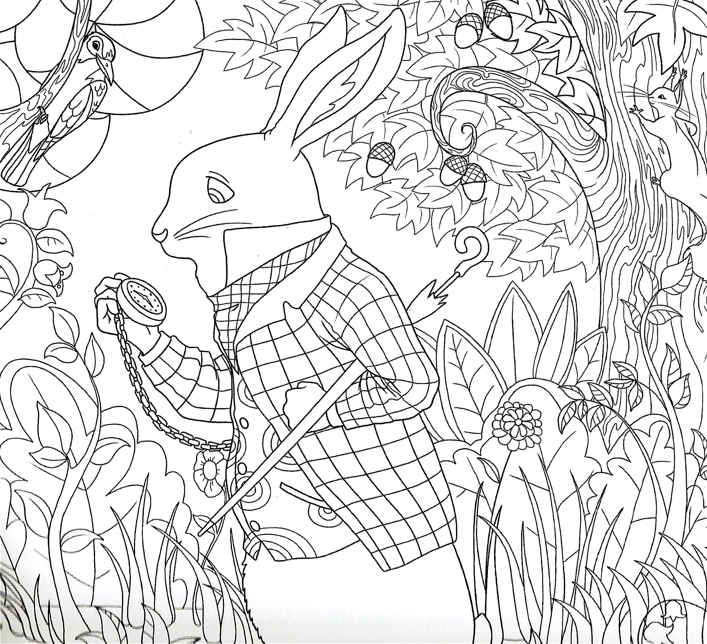 Alice In Wonderland Coloring Book Piccadilly Editor 9781608630028 Amazon Books