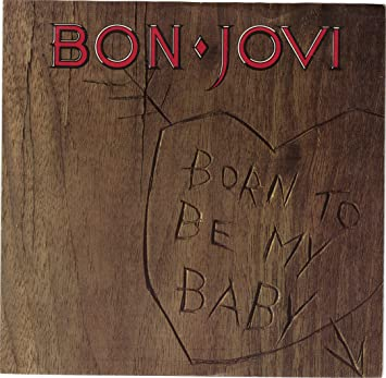 Image result for Bon Jovi - Born To Be My Baby