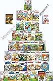 Top erhaltene Asterix Sammlung