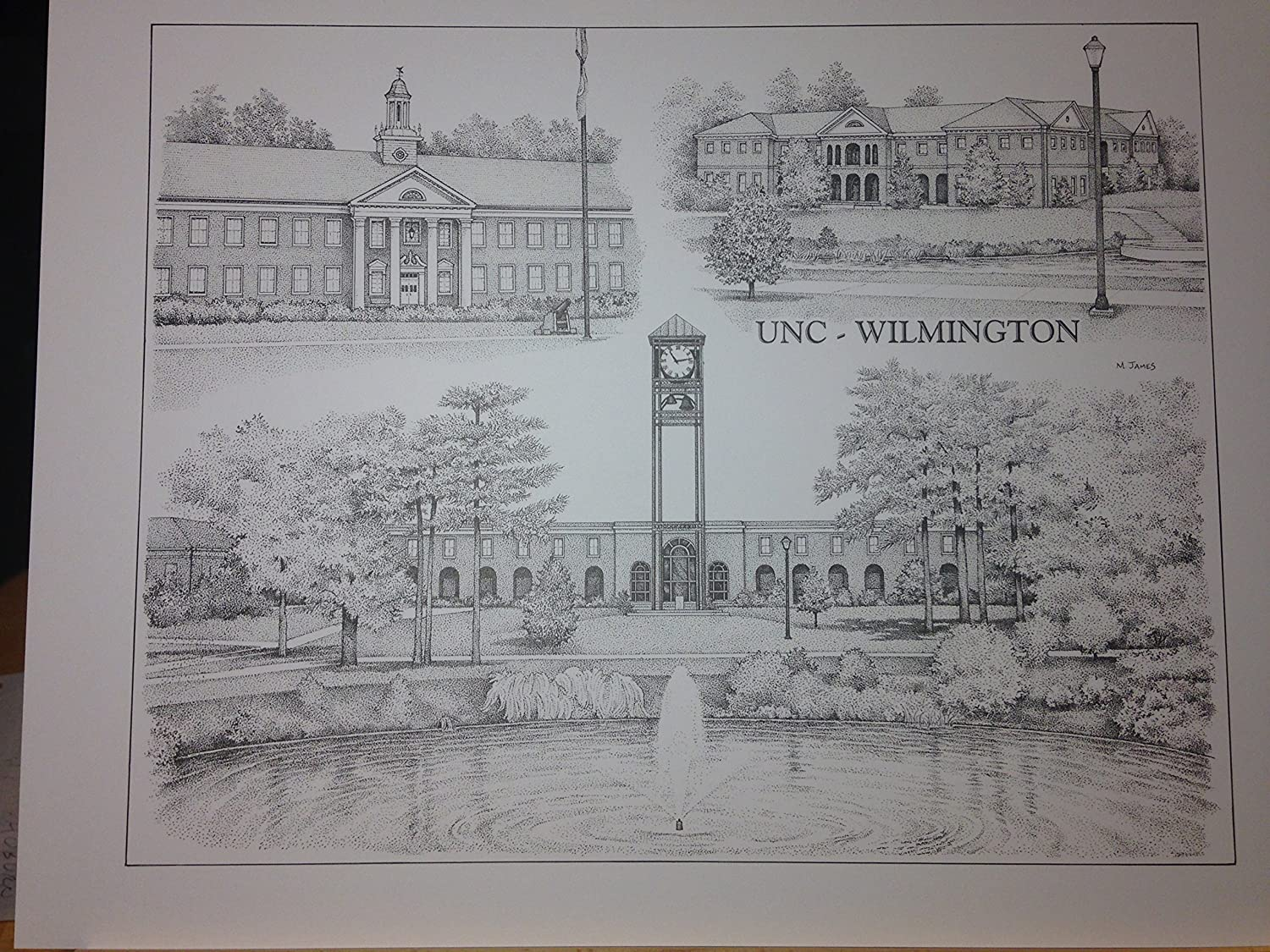 UNC-Wilmington 14'x18' pen and ink collage print