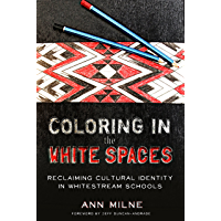 Coloring in the White Spaces: Reclaiming Cultural Identity in Whitestream Schools (Counterpoints Book 513)