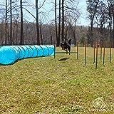 Lord Anson Dog Agility Set - Dog Agility Equipment - 1 Dog Tunnel, 6 Weave Poles, 1 Dog Agility Jump - Canine Agility Set for