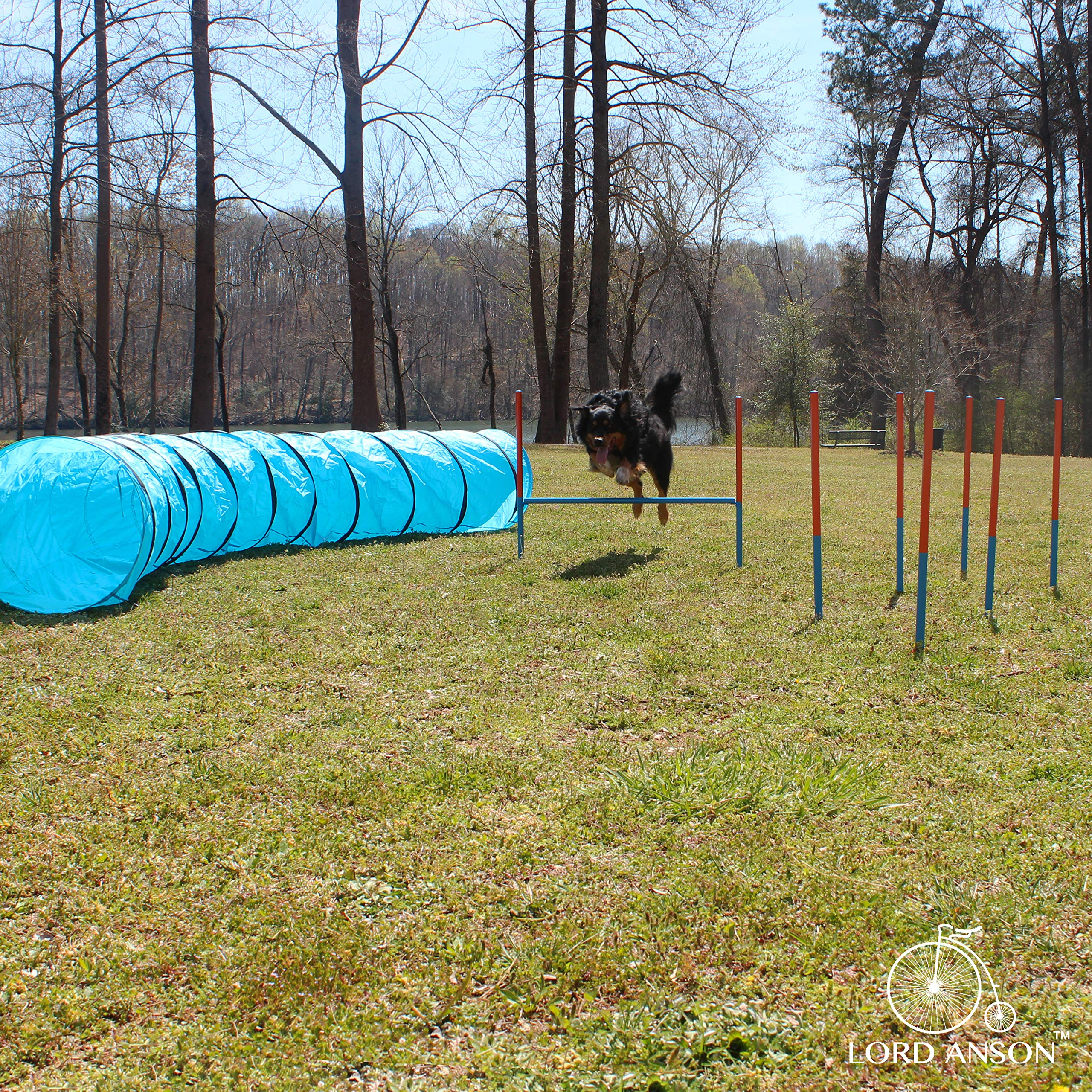 Lord AnsonTM Dog Agility Set - Dog Agility Equipment - 1 Dog Tunnel, 6 Weave Poles, 1 Dog Agility Jump - Canine Agility Set for Dog Training, Obedience, Rehabilitation by Lord Anson
