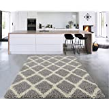 "Amazon Price History for:Sweet Home Stores Cozy Shag Collection Moroccan Trellis Design Shag Rug Contemporary Living & Bedroom Soft Shaggy Area Rug, Grey & Cream, 39"" L x 60"" W"