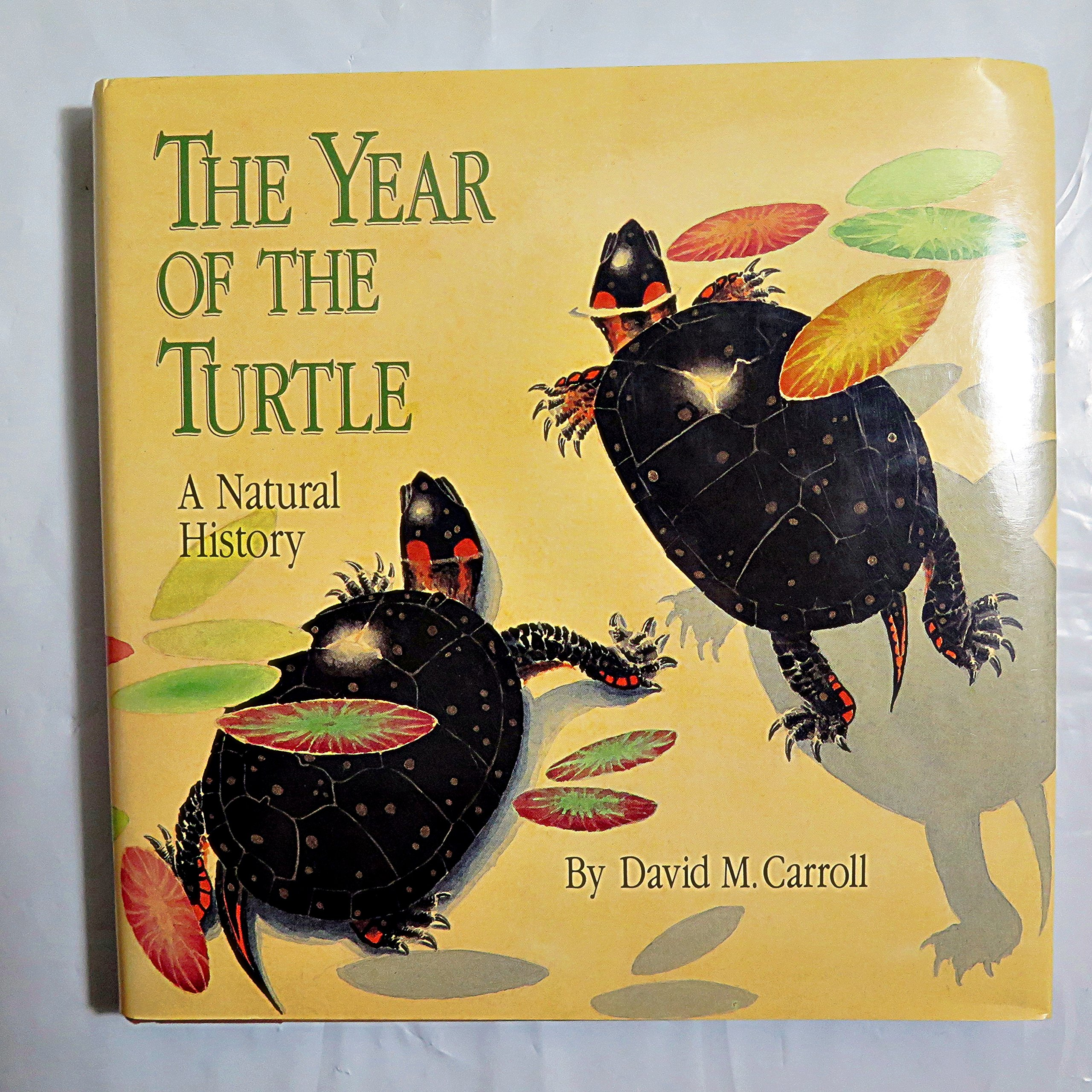 The Year of the Turtle: A Natural History