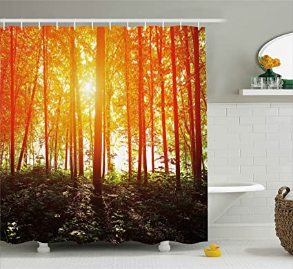 Ambesonne Nature Shower Curtain Foggy Forest Scenery With Sunrays Reflecting On Trees Mystic Woodland Image
