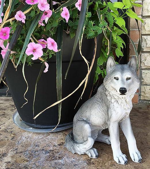 Amazon Com Majestic Mythical Sitting Gray Alpha Wolf Statue