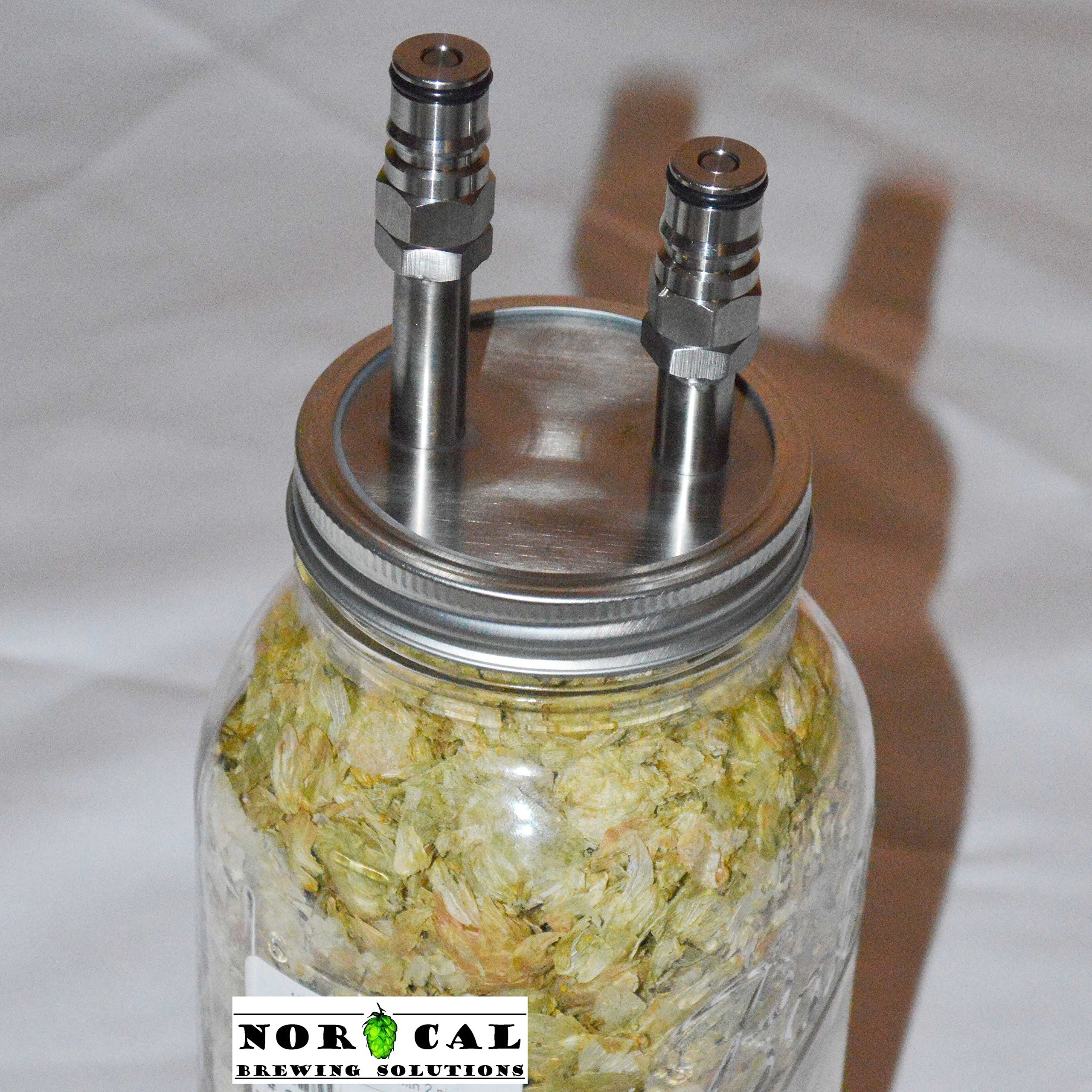 Jaybird 64 Ounce CANNING JAR HOP RANDALL - Ball Lock Connections - Kit with Jar