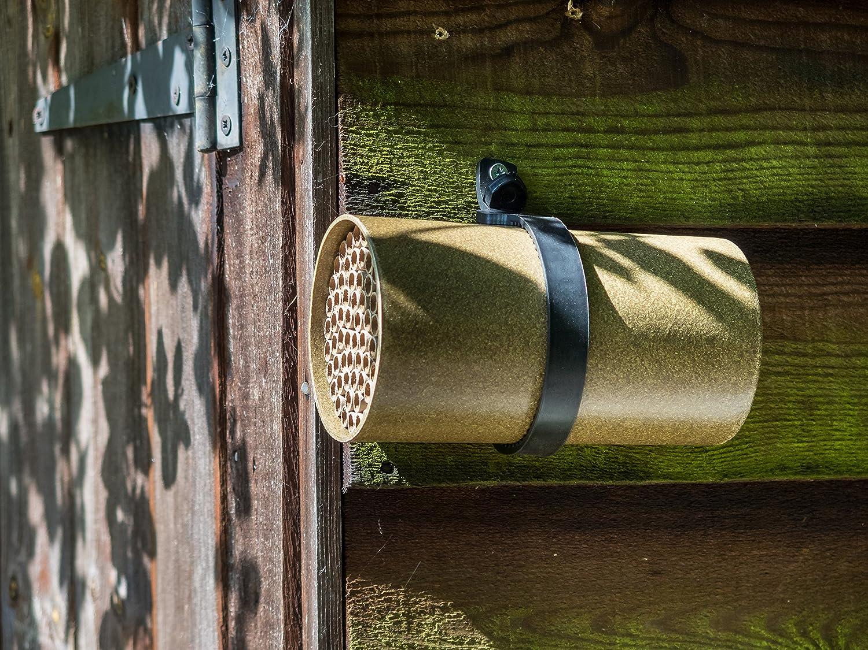 Wildlife World Kinsman Giant Solitary Bee Nester: Amazon.co.uk ...