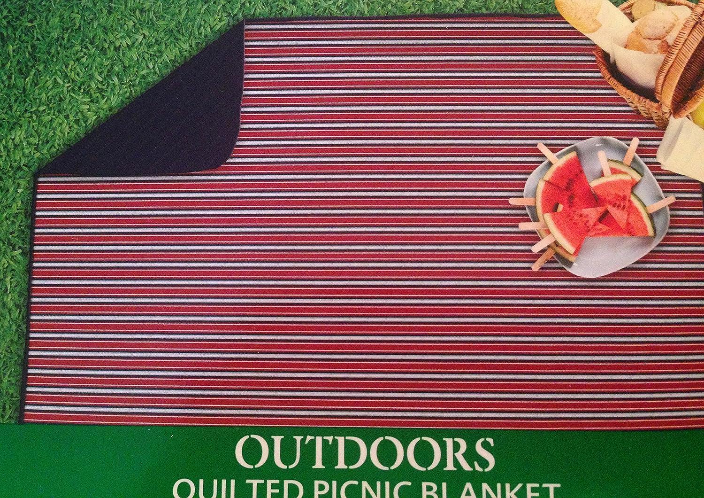 Amazon.com: Manta de picnic acolchada con bolsillo de ...