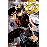 Demon Slayer: Kimetsu no Yaiba, Vol. 2: It Was You book cover