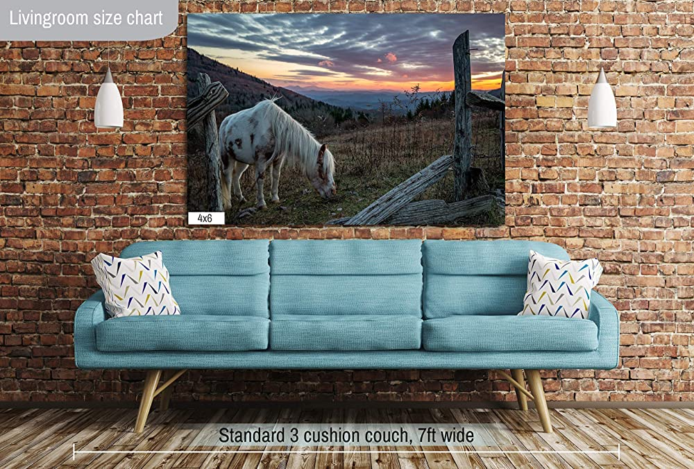 Lustre Print Metallic Prints or Canvas for Decorations Grayson Highlands Mountain Landscape Sunset Photo Wall Art by Will Simpson Photography Nature Decor Artwork for Living Bed Room Office Home
