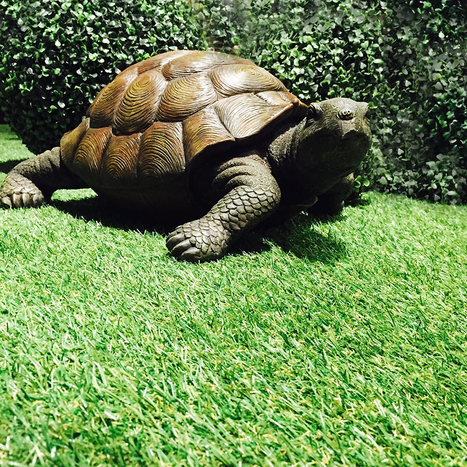Amazon.com : Whole House Worlds Toby Turtle, Ultra-realistic Outdoor ...