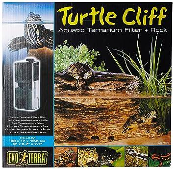 Exo Terra Filtro y Roca para Tortuga Mediano: Exo Terra: Amazon.es: Productos para mascotas